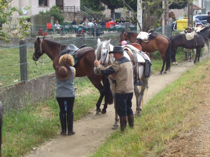 Horses do the Camino too